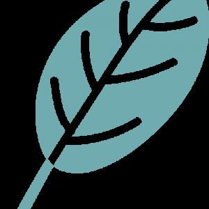 leaf-logo-teal.png
